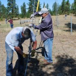 Bob N7AU and Wayne WA1PMA  detach the top guys to prevent interference to the raising of the Force 12 MAG620 Yagi and its 44' boom (while Mark K7HPT observes)